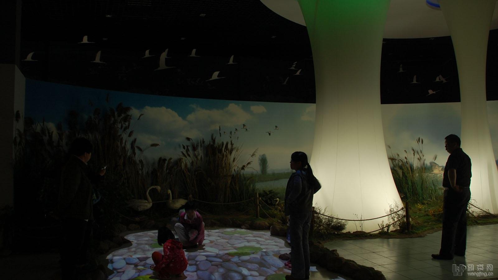 风景/里面有个博物馆还是比较科普的,做的不错,有很多鸟类和昆虫的...