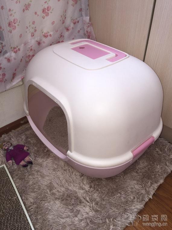 给猫消毒猫厕所用什么消毒水好?怎么用?
