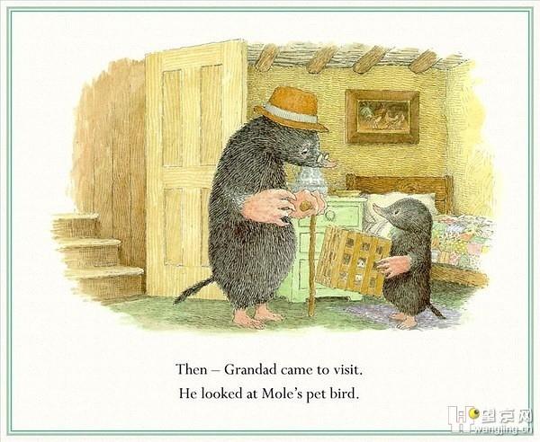 贴图 一本小故事书 Mole and the baby bird,治愈系,全年龄段 望京英